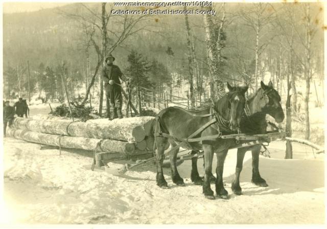 Horses pulling log sled, ca. 1890