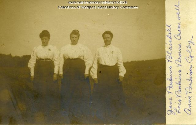 Three Perkins sisters, Westport Island, ca. 1908