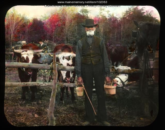 World's fair cattle show, North New Portland, ca. 1910
