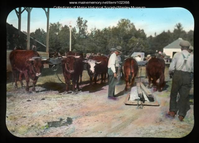 Farmington fair, Farmington, 1932