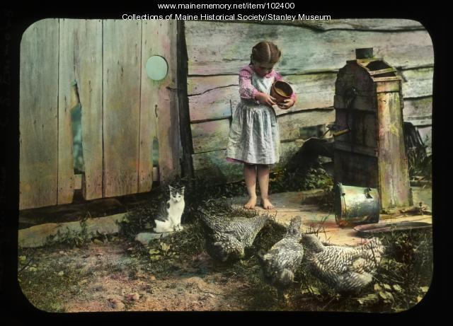 Hazel True feeding the hens, New Portland, ca. 1910