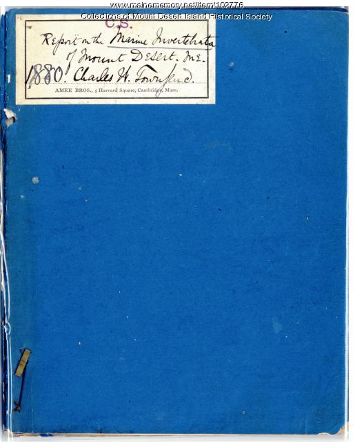 Champlain Society Report on the marine Invertebrata of Mount Desert, 1880