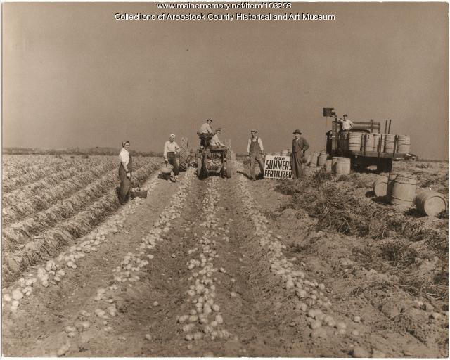 Carter Farm, Monticello, ca. 1940