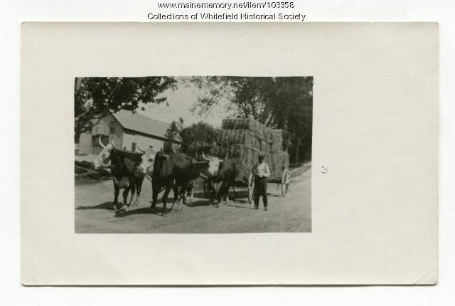Load of pressed hay, Coopers Mills, Whitefield, ca. 1910