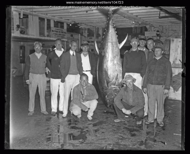 Men posing with a bluefin tuna, ca. 1935