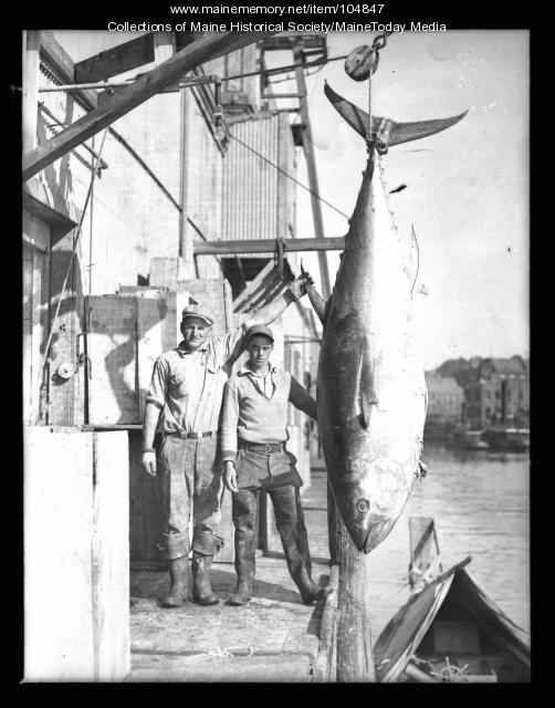 Two men posing with a bluefin tuna, ca. 1935