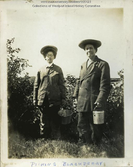 Picking blackberries, Westport Island, ca. 1907