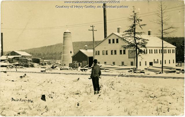 Sawmill and clothespin factory, Davidson, ca. 1908