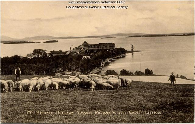 Mt. Kineo House and sheep, Mt. Kineo, ca. 1900
