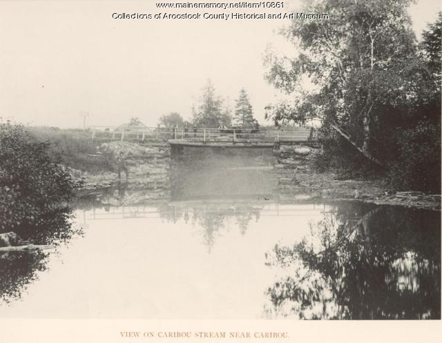 View on Caribou Stream near Caribou