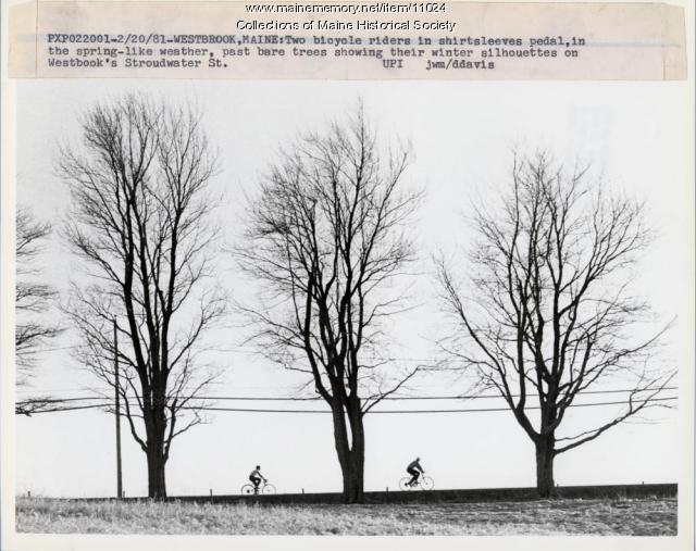 February bicycling, Westbrook, 1981