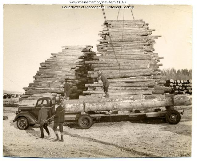 Yellow birch logs, Atlas Plywood Co., Greenville, ca. 1955