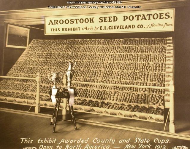 Seed potato display, Houlton, 1912