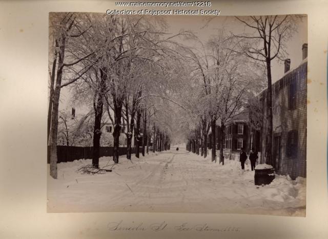 Lincoln Street, Brunswick, 1885
