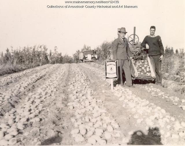 Levite Cyr farm, Lille, ca. 1930