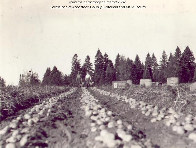 W.A. Lowery farm, New Limerick, ca. 1930