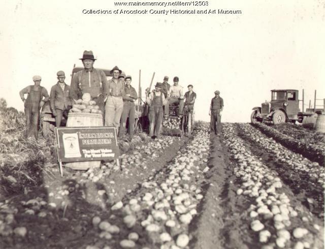 Frank C. McIntyre farm, Perham