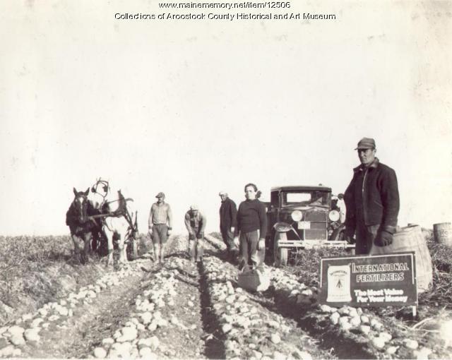L.E. Sirois farm, Limestone, ca. 1930