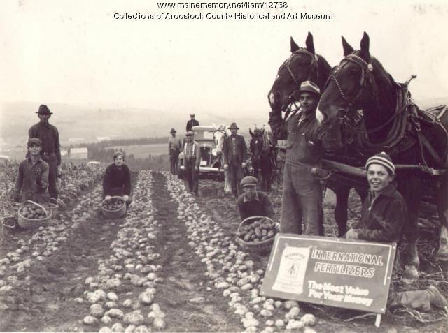Alphie Daigle farm, New Canada, ca. 1930