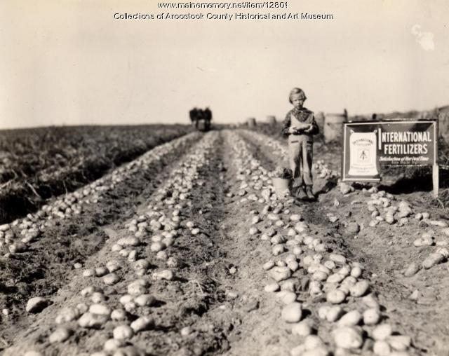 Archie Ladner farm, Easton