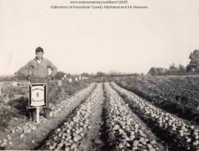 Boyd Harrington farm, Patten, ca. 1938