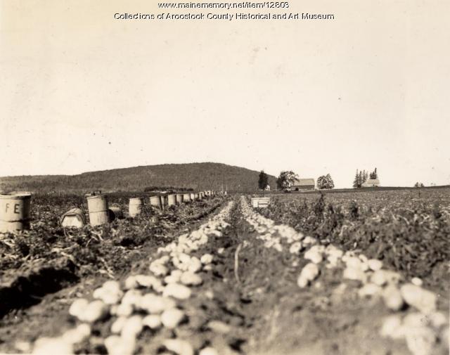 Frank C. Estabrook Farm, Linneus