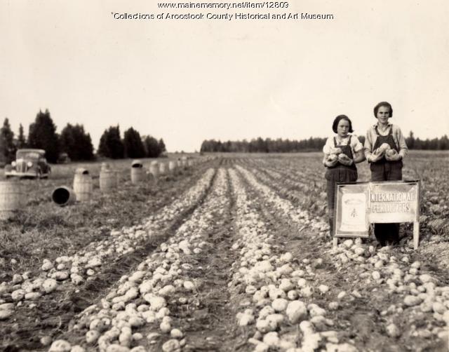 F.F. Page farm, Ashland