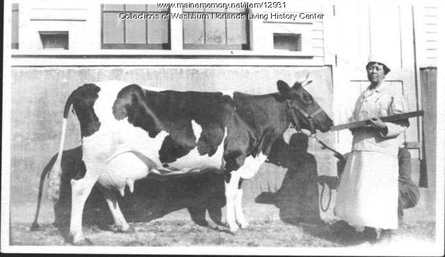 Lilian Washburn with cow, Livermore, ca. 1900