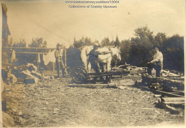 Maine memory network portable sawmill eustis ca 1906 for Fish camp lake eustis
