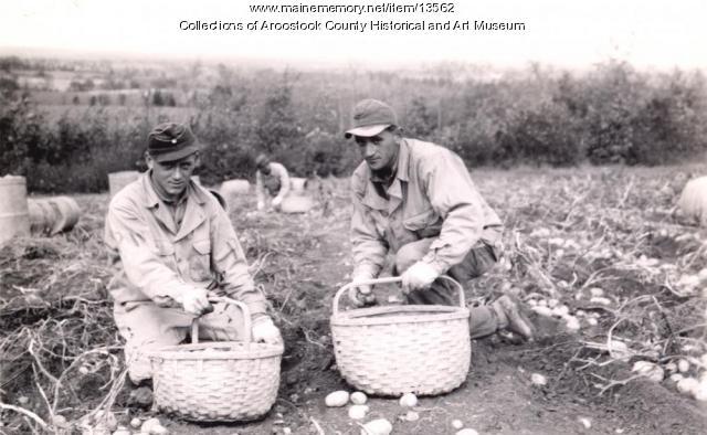 German POWs on the farm, Houlton, ca. 1945
