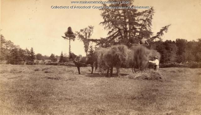 Haymakers, Houlton, ca. 1895