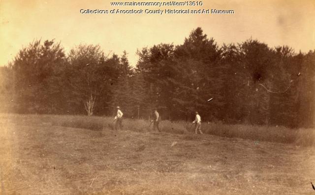 Hay mowers, Houlton, ca. 1895