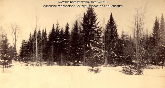 White Settlement Road, Houlton, ca. 1890