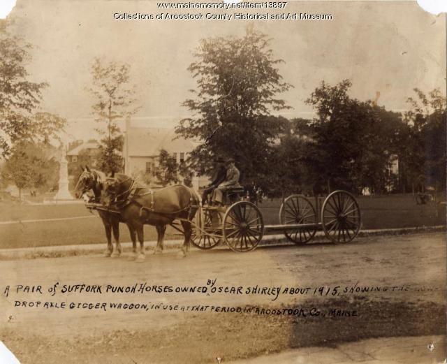 Suffolk Punch horses and gigger wagon, ca. 1915