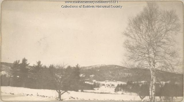 View of Webb Rowe Mountain, ca. 1900