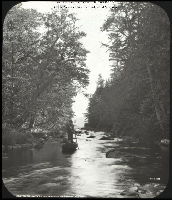 Near Munsungan Lake, Piscataquis County, ca. 1900