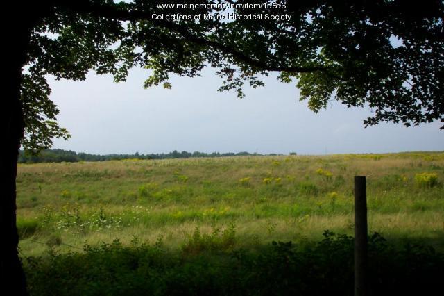 Field of Lot #33