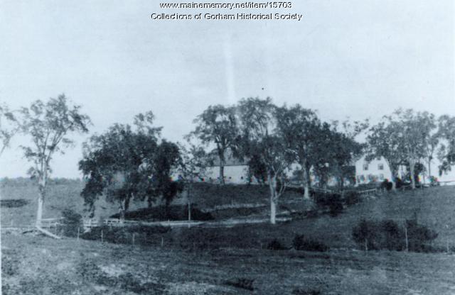 Indian Camp Brook, Gorham