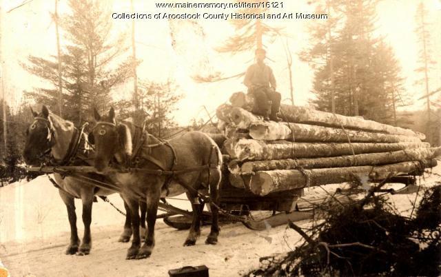 Delmont Emerson woods team, Island Falls, ca. 1910