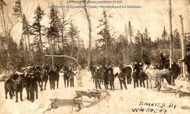 Delmont Emerson's woods crew, Island Falls, ca. 1910