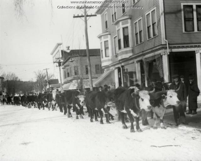 Arrival of the vault, Sanford, 1915