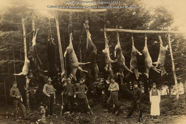 Successful hunt in the Aroostook Woods, ca. 1900