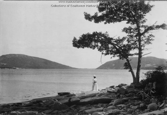 Somes Sound Looking South