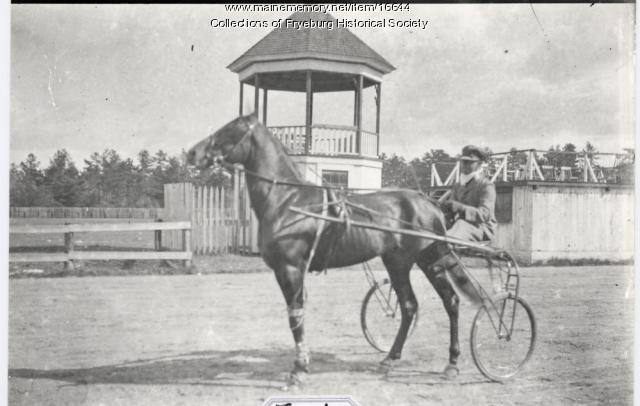 Horse and buggy, Fryeburg Fair, ca. 1900
