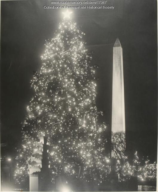 Presque Isle Christmas Tree, Washington, D.C., 1958