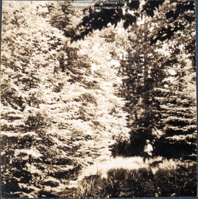 Ragged Lake hike, 1909