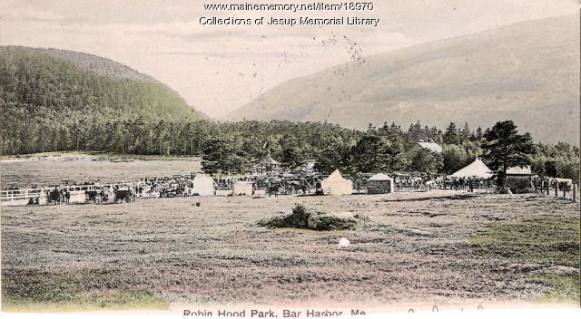 Robin Hood Park, Bar Harbor, ca. 1908