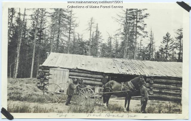 Bald Mountain Forest Service work, ca. 1920