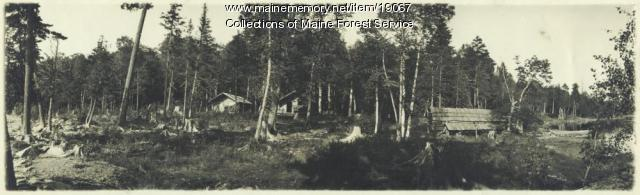 Mellimagassett Lake camps, ca. 1920