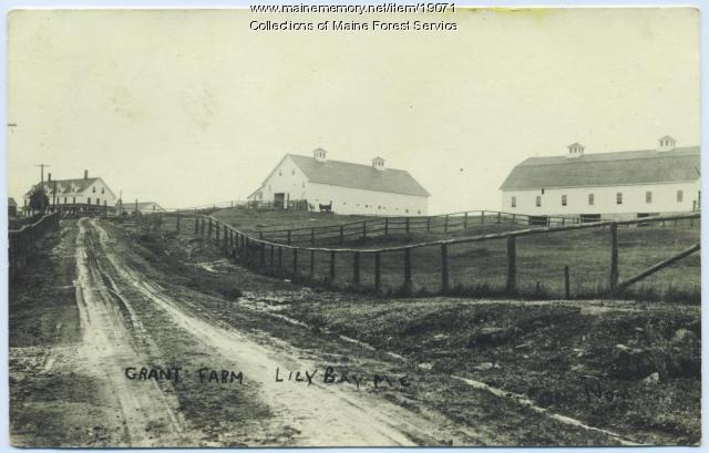 Grant Farm, Lily Bay, ca. 1920
